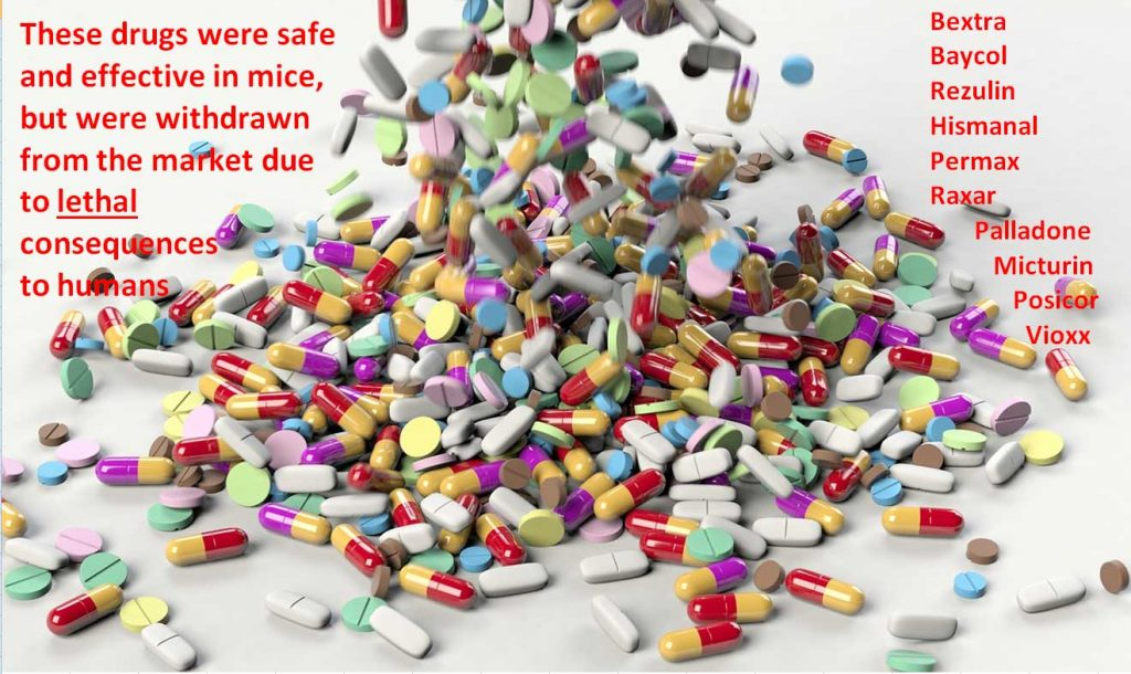 These drugs were safe and effective in mice, but were withdrawn from the market due to lethal consequences to humans: Bextra Baycol Rezulin Hismanal Permax Raxar, Palladone, Micturin, Posicor, Vioxx